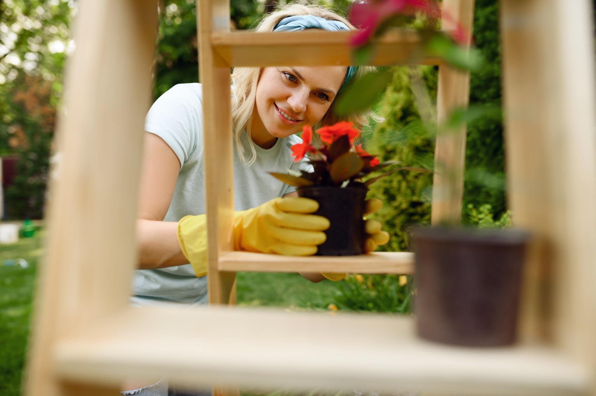 Woman growing flowers in pots in the garden